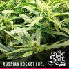 Russian rocket fuel reg auto